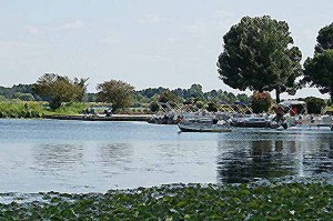 Pontoon Boats at Lake Shabbona Image